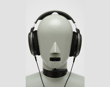 Bruel & Kjaer Type 4128C HATS (Head and Torso Simulator)